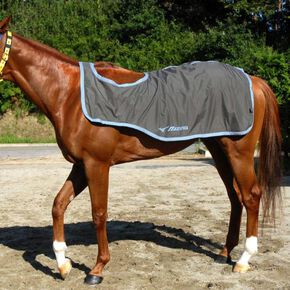 BERG TECH EX/Excerise rug for rainy days (for horse riding), Charcoal × Light Blue