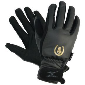 Gloves with BREATH THERMO for riding, Black